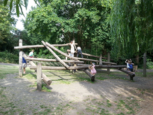 logs used for climbing frame