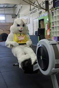 easter rabbit at the gym