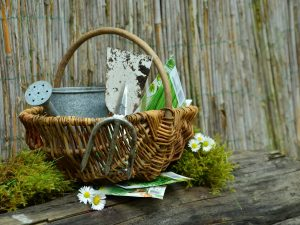 wicker basket filled with gardening items