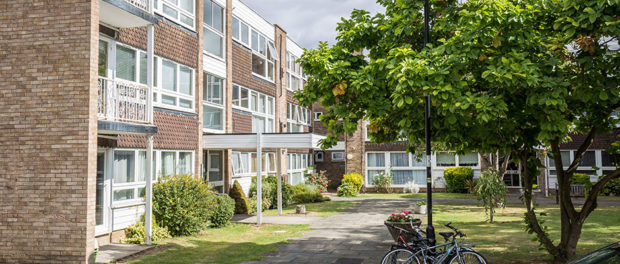 External view of block of flats with path to Entrance and garden section